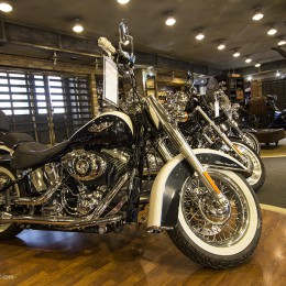 Harley Davidson bolt